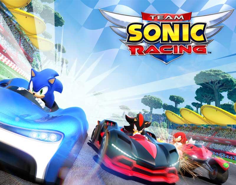 Team Sonic Racing™ (Xbox Game EU), The Gamers Fate, thegamersfate.com